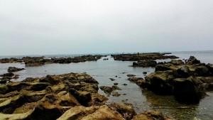 一色海岸海の道のような感じ