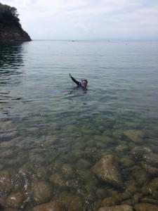 浮島海岸の中央海岸
