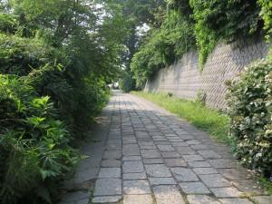 観音崎公園の歩道